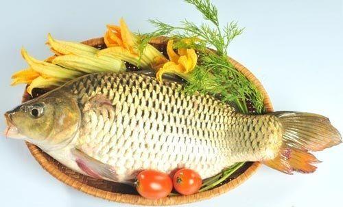 cá chép ngon