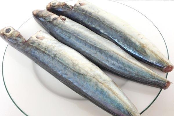 sơ chế cá nục